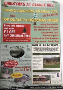 Christmas Trees in Biddenden at Cackle Hill Lakes
